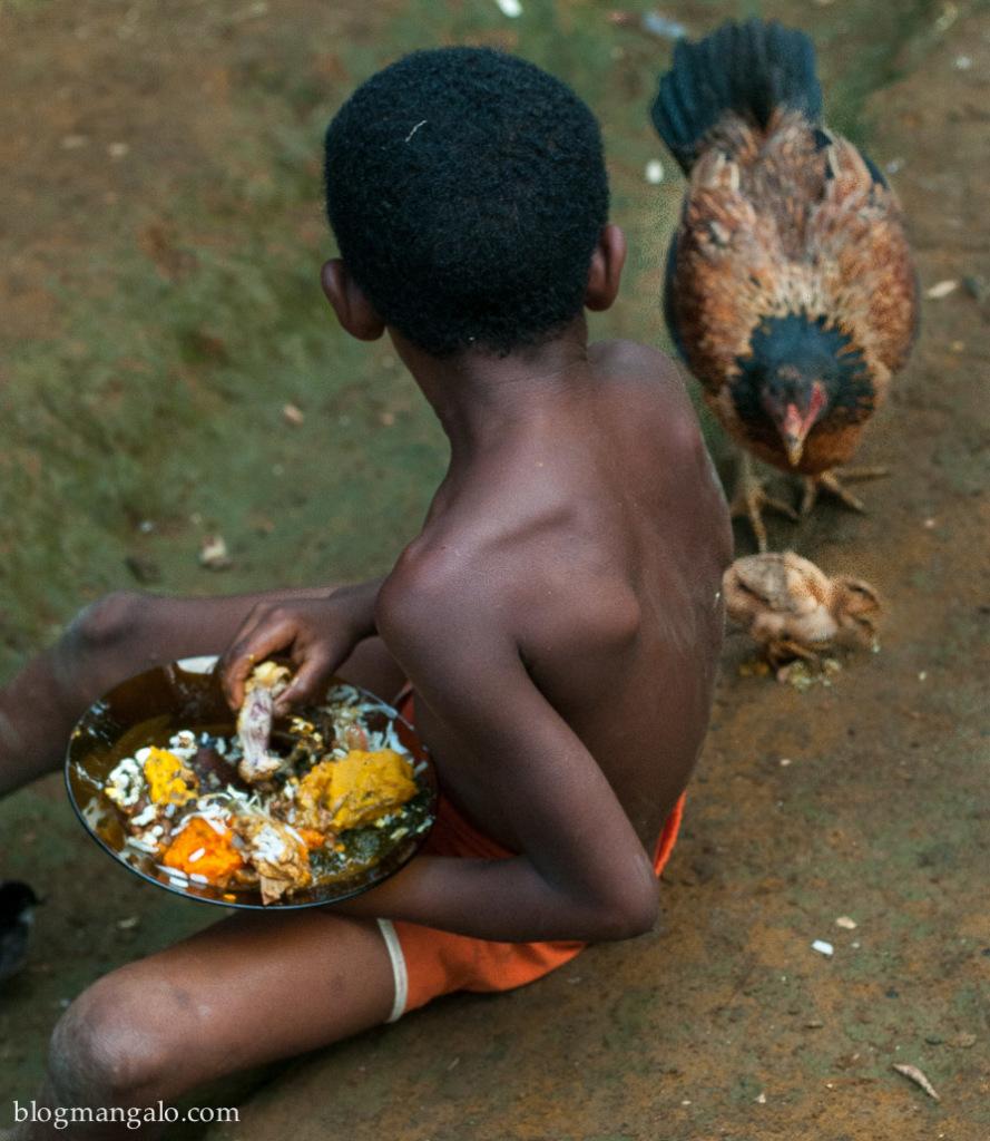 o menino, o caruru, a galinha e seu pintinho